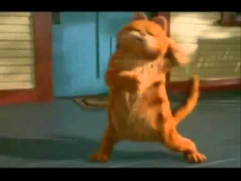 Gangnam style  Garfield
