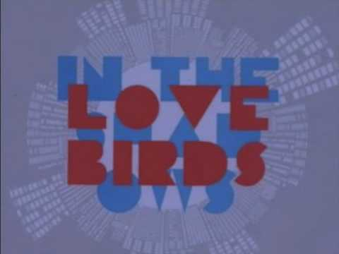 Lovebirds - In The Shadows video