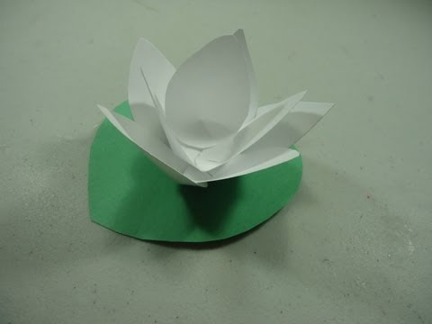 How to make a paper lotus flower mightylinksfo