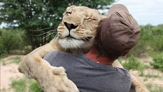 Amazing stories about the friendship of people and animals