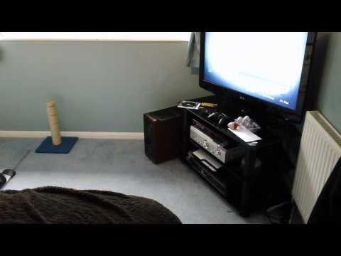 q acoustics stereo w/ denon pma710ae