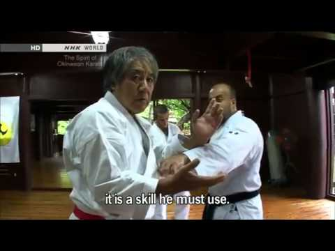 Tee - The True Spirit of Okinawan Karate