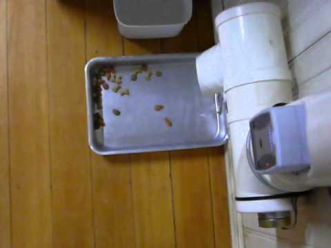 Baño para gatos automatico