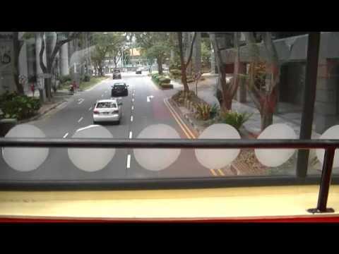 【News of Sing Sing】Ceiling atrium bus tourism Singapore city center