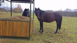 DIY hay feeder for horses