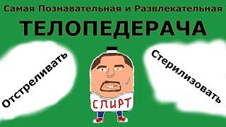 С.П.И.Р.Т. - Отстрел vs Стерилизация