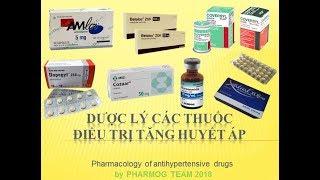 [Pharmog SS1 - Tập 11] - Dược lý về thuốc điều trị tăng huyết áp
