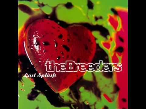 Cover image of song New year by Breeders