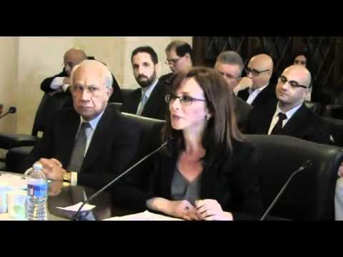 Cynthia Farahat  Sharia-Jihad  against Egypt and Coptic Christians.