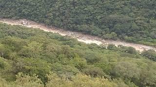 Río santo domingo pueblo de san Simón coyoltepec