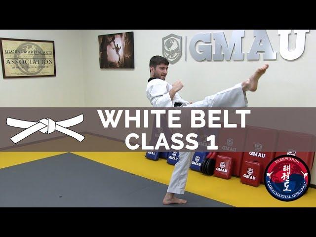 Taekwondo Follow Along Class - White Belt - Class #1 thumbnail