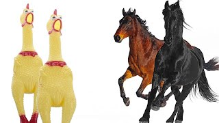 Download lagu Old Town Road - Chicken Cover