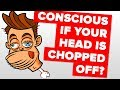 How Long Do You Remain Conscious If Your Head Is Chopped Off?