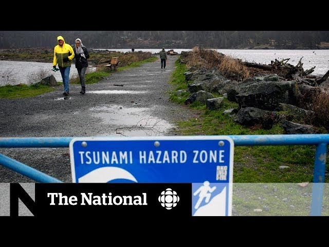 Tsunami warning: Was enough done to warn B.C.?