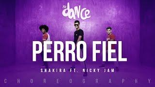 download lagu Perro Fiel  - Shakira Ft. Nicky Jam  gratis