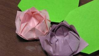 Japanese Traditional Origami 'lotus'