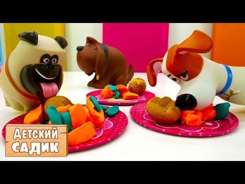 #ИГРУШКИ из мультика 🐈 Тайная жизнь домашних животных. 🐕 Детский сад КАПУКИ КАНУКИ. Видео для детей
