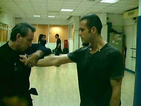 Kung Fu Training: levers. Basics and exercises Image 1