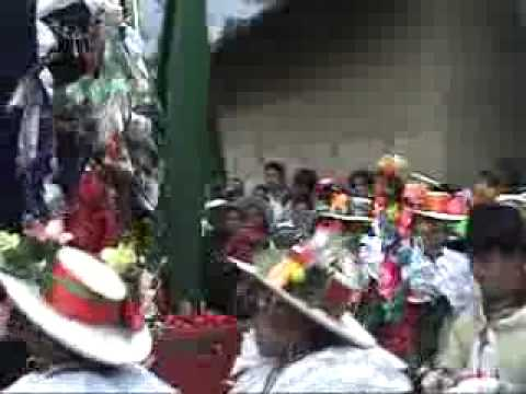 pallas de caujul 2008