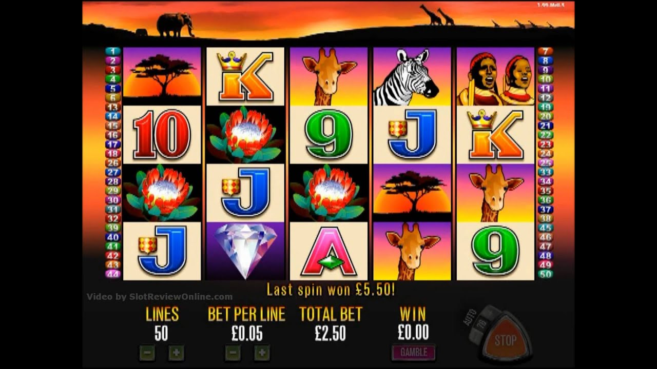 Lions Share™ Slot Machine Game to Play Free in Microgamings Online Casinos