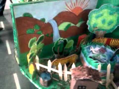 School Projects on Environment School Science Project on