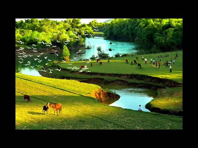 Nhac Hoa Tau VIET NAM Bat Hu   Best Vietnamese Instrumental Music
