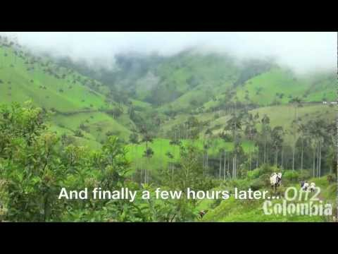 Valle de Cocora Colombia - Trek to the Cocora Valley near Salento