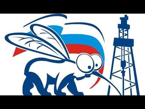 Почему дорожает бензин в России