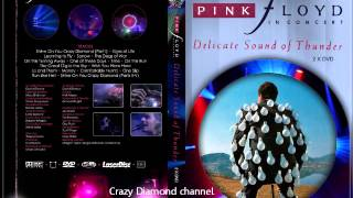"""Pink Floyd Video - Pink Floyd - """"Delicate Sound of Thunder"""" Audio"""