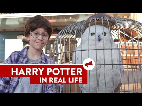 Harry Potter In Real Life - Movies In Real Life (episode 8) video