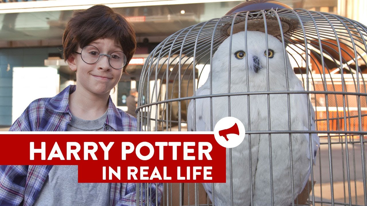 Harry Potter In Real Life Movies In Real Life Episode 8