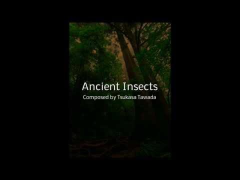 Tsukasa Tawada / Ancient Insects