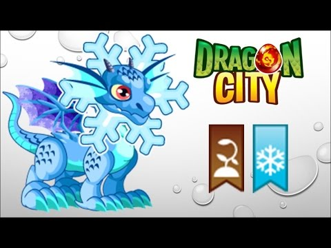 Dragon City - Getting Snowflake Dragon 100% (No Hack)