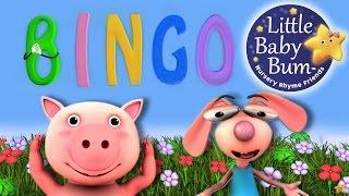 BINGO | Nursery Rhymes | from LittleBabyBum!