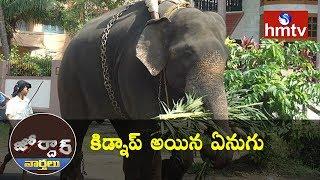 Elephant Kidnap In Kerala | Jordar News  | hmtv News