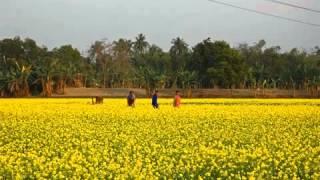 The National Anthem - Jatiyo Sangeet of Bangladesh