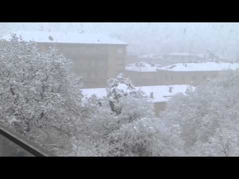 neve a bologna 23 02 2013 movie