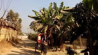 beautiful nature in village