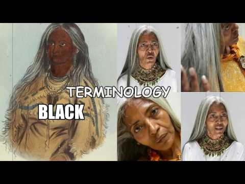 2017:  INDIAN NEGRO MULATTO AFRICAN-AMERICAN BLACK thumbnail