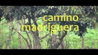 CAUDAL   Camino madriguera (video)