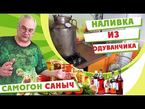 Домашняя наливка из одуванчиков / Рецепты наливок / #СамогонСаныч