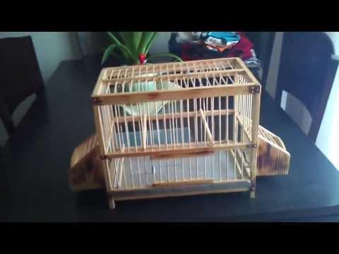 jaula artesanal 3  //  craft cage 3