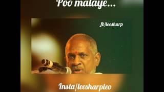 Best tamil love whatsapp statuspoo malayeilayaraja