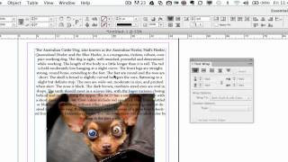 Adobe InDesign CS5 & CS6 Tutorials
