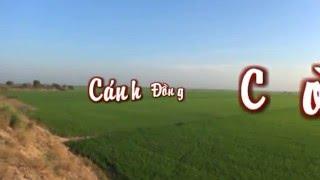 Cánh Đồng Cò