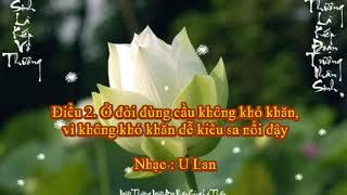 Meditation Music | 5: Nhac Thien - Hoa Sen Nuoc Chay