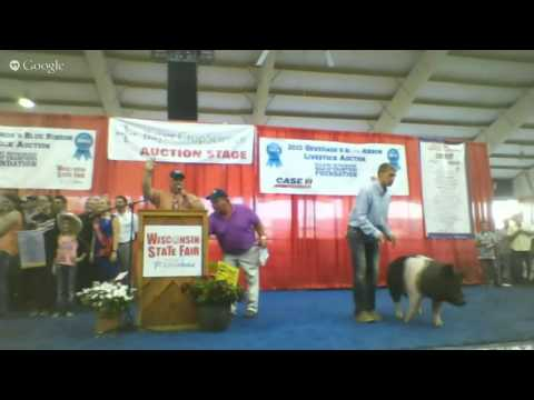 2015 Wisconsin State Fair Governor's Livestock Auction