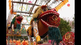 Lion dance for Chinese New Year | CCTV English