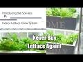 Never Buy Lettuce Again - The Indoor Soil-less Lettuce Grow System, DIY Clean & Easy! 4K