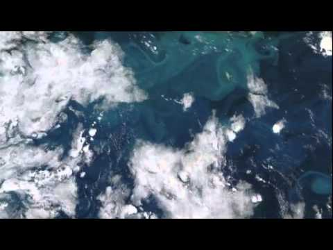 NASA VIDEO OF PLANKTON FROM SPACE